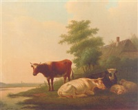 cattle and sheep on a riverbank by a farmhouse by matthijs quispel