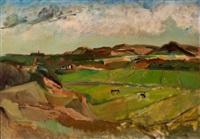landscape near schoorl by harrie kuyten
