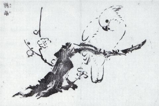 sparrow by tachibana morikuni
