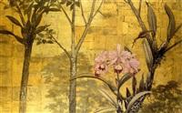 orquideas by gonzalo ariza
