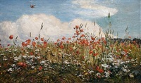 field of poppies by walter field