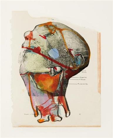 anatomie by miodrag djuric dado