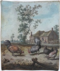 cockerels and chickens in a farmyard by margarethe de heer