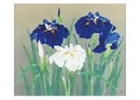 iris by okazaki tadao