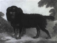 floss, mr potter's favourite spaniel in a landscape by h. s. cottrell