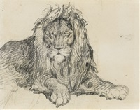study of a lion by théodore géricault