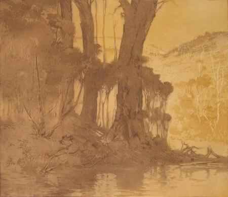 banks of the blackwood by henri van raalte