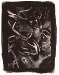 untitled (deer heads) by gwen akin