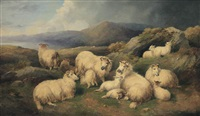 sheep resting by john charles morris