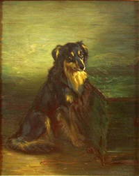 a scots collie by robert l. alexander