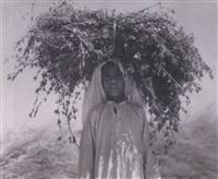 nedj, saudi arabia-al kharj, camel by harold corsini