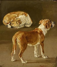 dog studies by henriette ronner-knip