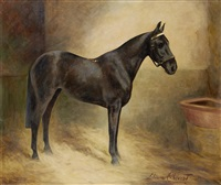 a profile portrait of a black mare in a stable by lilian cheviot