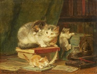 cats in the library by henriette ronner-knip