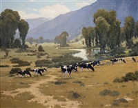 cows in telluride valley by brian blood