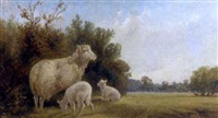 ewe and lambs in a landscape, with cattle beyond by walter henry pigott