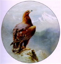 the eagle: he clasps the crag with crooked hands... etc. - lord tennyson by charles whymper