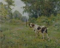 cane nel paesaggio by alfredo vaccari