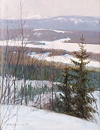 vinter - duved by ante karlsson-stig