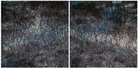 this land so rich in beauty no. 6 (diptych) by zeng fanzhi