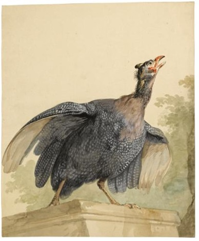 a guinea fowl on a ledge by aert schouman