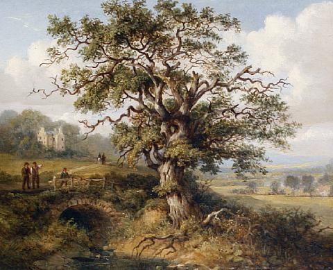 wallace oak by jane nasmyth