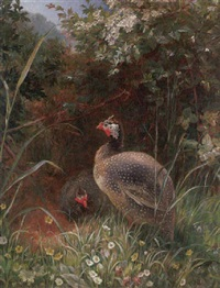 guinea fowl by george hickin
