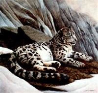 snow leopard by john aldrich ruthven