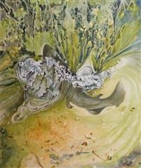truite fario by christian dache