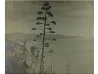 vista de blanes (+ vista de la costa brava; 2 works) by jose alemany