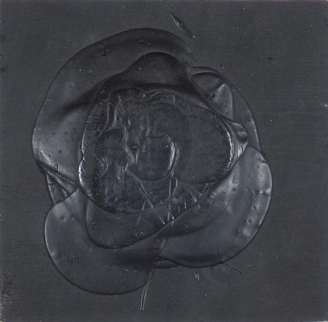 schwarze rose (haufen) by dieter roth