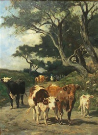 cattle on a track by marie dieterle