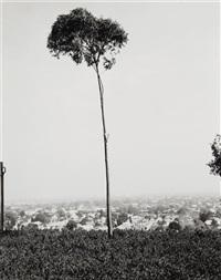 on signal hill, overlooking long beach, california by robert adams