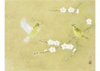 little bird by atsushi uemura