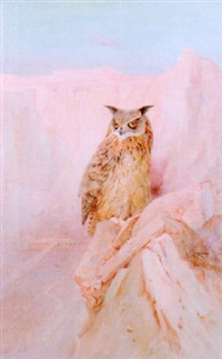 an egyptian eagle owl at the temple of deir el-bahari, egypt by charles whymper