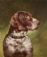 head of a german shorthaired pointer by carl reichert