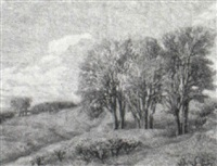 spring landscape by alois metz