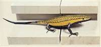 lizard by aphrodite liti