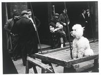 untitled (poodle), london 1962; untitled (sandwich board, furs), london 1962 (2 works) by lutz dille