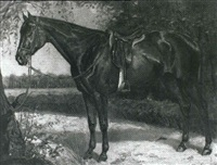 horse in a landscape by hans buettner