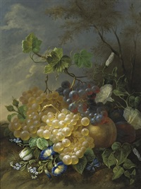grapes and morning glory by jan van der waarden