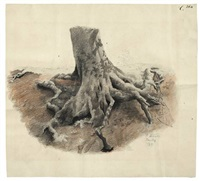 baumwurzel (auf dem ettersberg bei weimar) by paul wilhelm tübbecke
