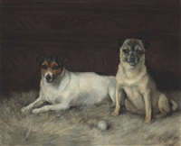 portrait of two dogs by florence jay