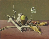 still life with rotting quince #1 by roger medearis