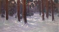 sonnen durchfluteter winterwald by kruschinsky