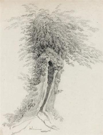 un saule creux by pierre henri de valenciennes