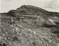 clear-cut and burned, east of arch cape, oregon by robert adams