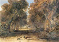faisan dans un sous-bois by newton (smith limbird) fielding