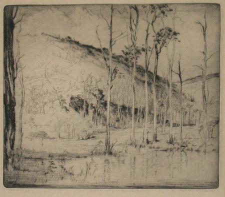 hills saplings by henri van raalte