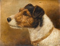 fox terriers (pair) by edward aistrop